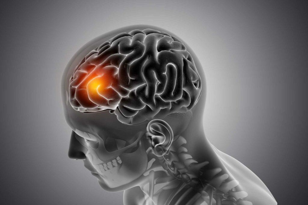 魚油幫助腦部發展功效