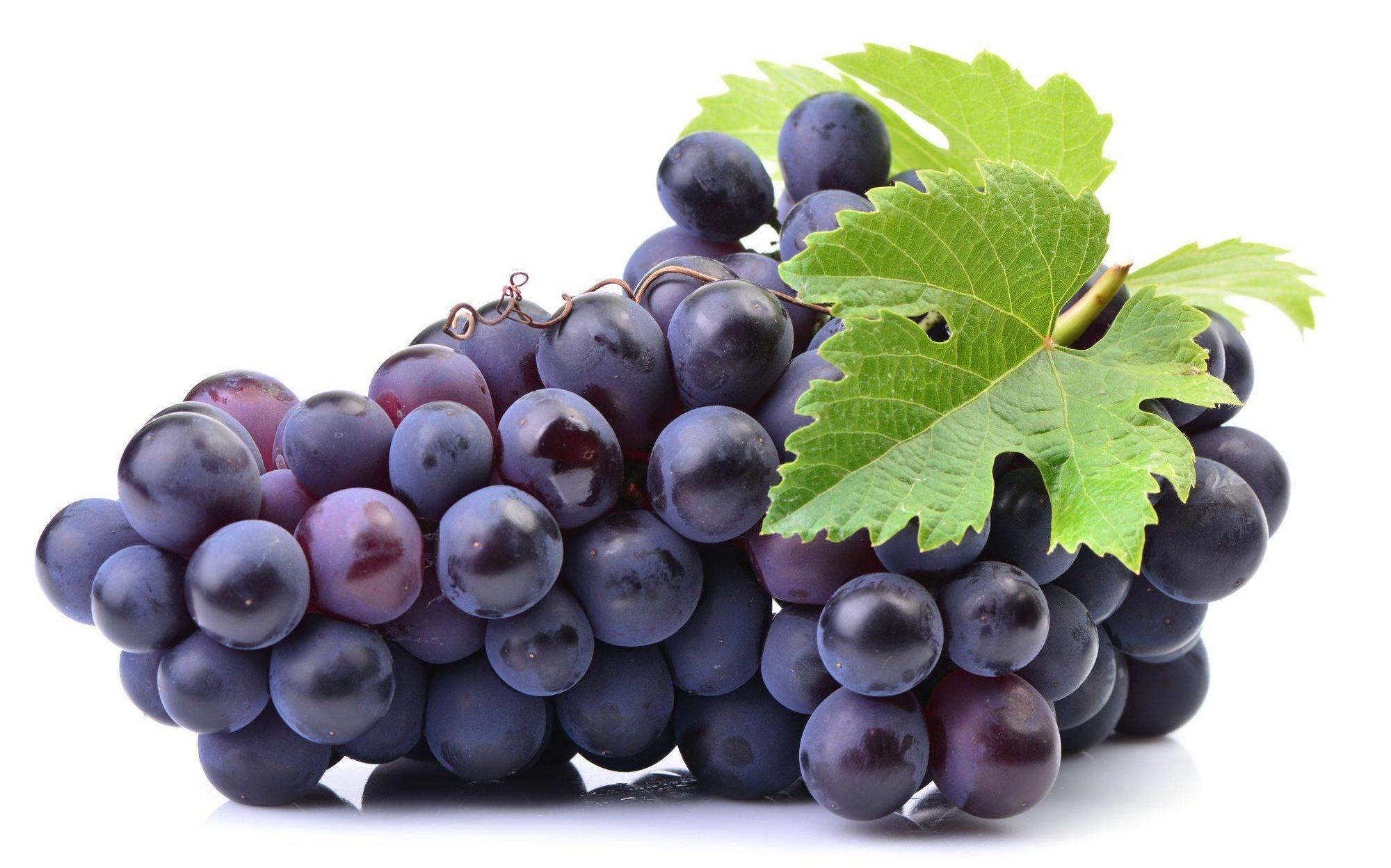 葡萄膳食纖維