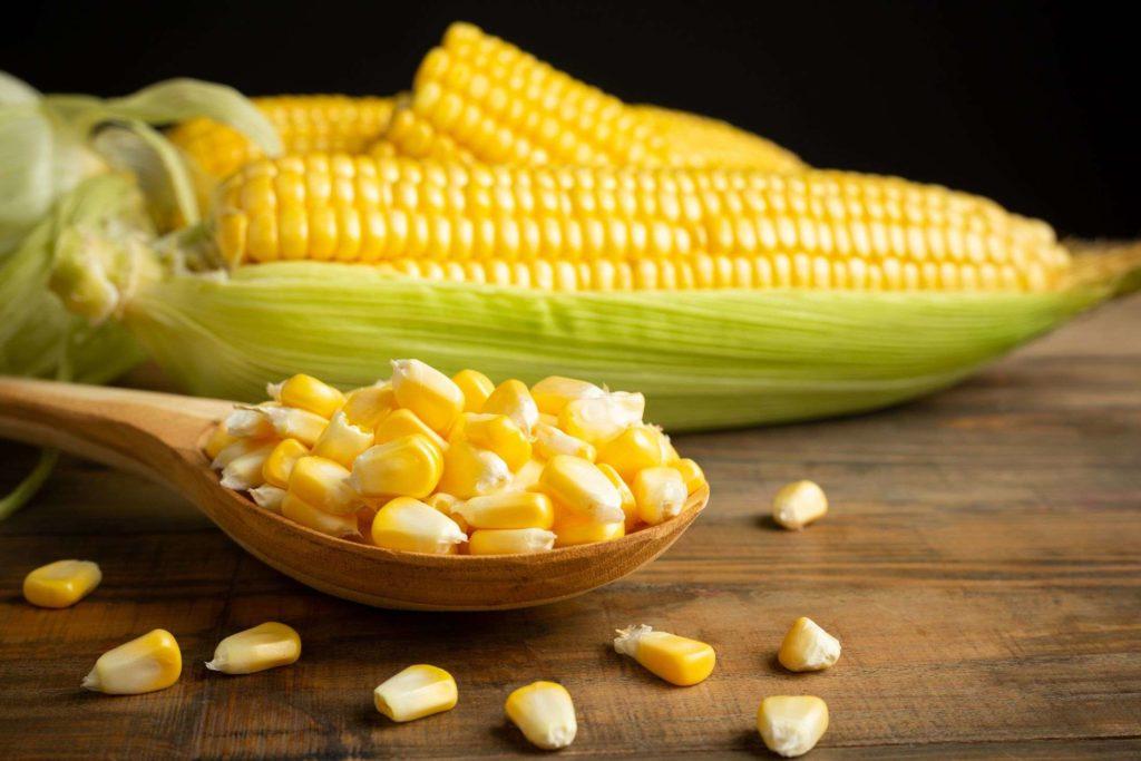 膳食纖維玉米