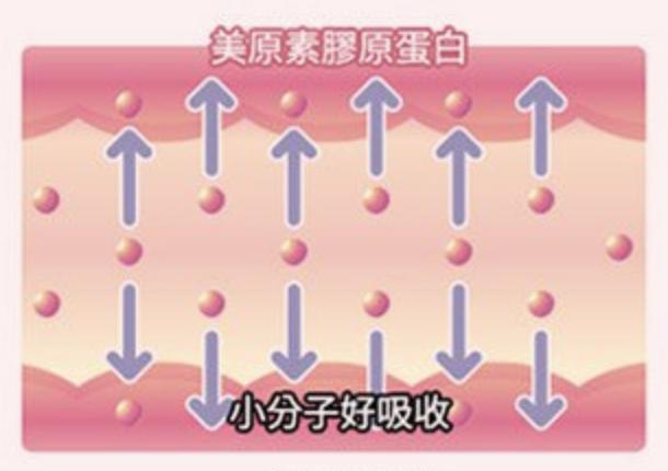 白蘭氏膠原蛋白評價