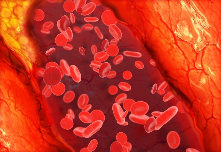 膠原蛋白降低膽固醇
